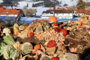 Food waste to power