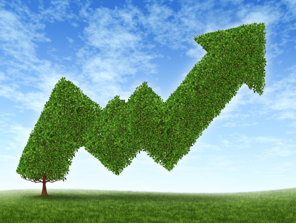 Doing Green Business: Personal Efforts